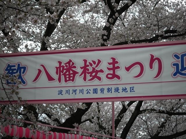2017-04-09 154.JPG