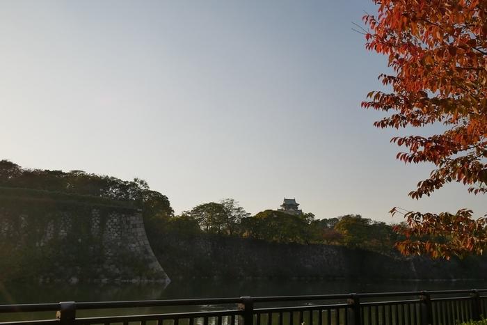 2017-11-05 110.JPG